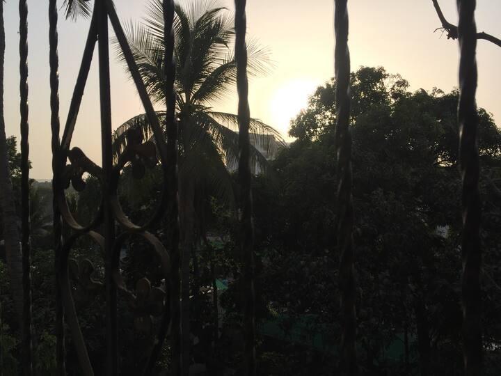 KJ's Coconut Breeze  stay