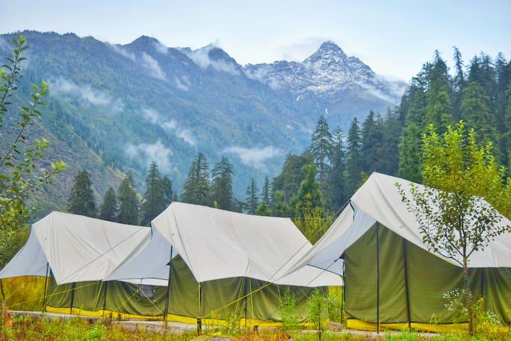 Cosmic Monks Camping -Thrilling Adventure in Kalga