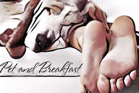 Pet and Breakfast, perfetto per 2 e 4 zampe - Moncalvo - Haus