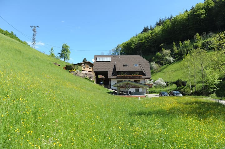 Haus Wilde Rench - Fewo Bergpanorama