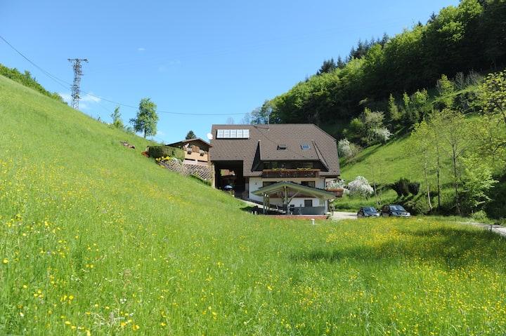 Haus Wilde Rench - Fewo Bergpanorama