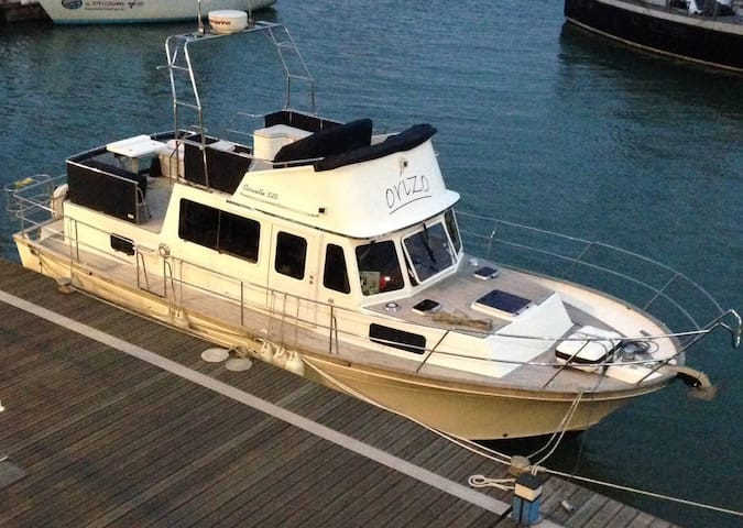 Motor Yacht in Inner Harbour - Torquay - Boot