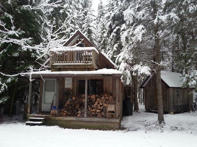Cozy Creek-Side Cabin
