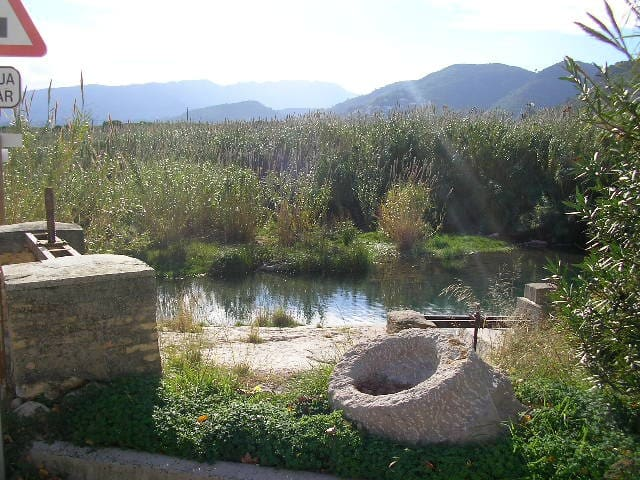 Habitac.con baño cerca Gandia Oliva - Palma de Gandía - Casa