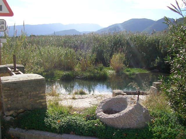 Habitac.con baño cerca Gandia Oliva - Palma de Gandía - House
