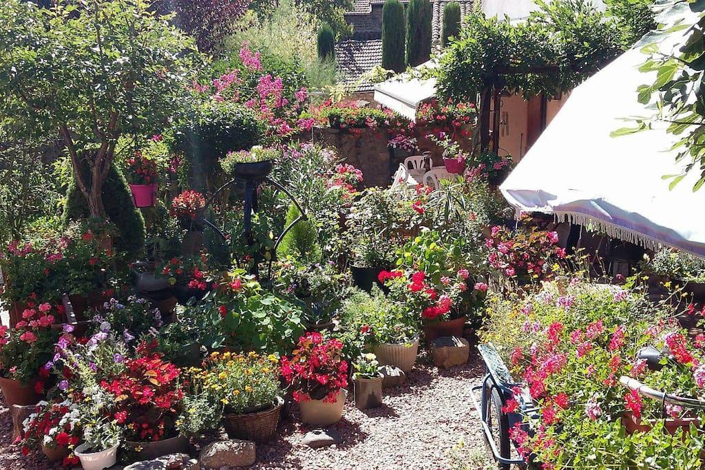 Mon jardin fleuri qui vous conduira à l'entrée de la maison.