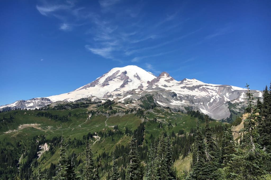 Mount Rainier (view from a hike)