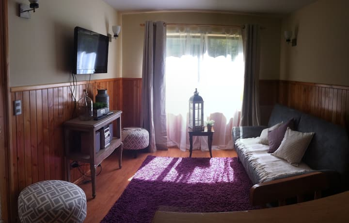 Beautiful apartment in Pucon