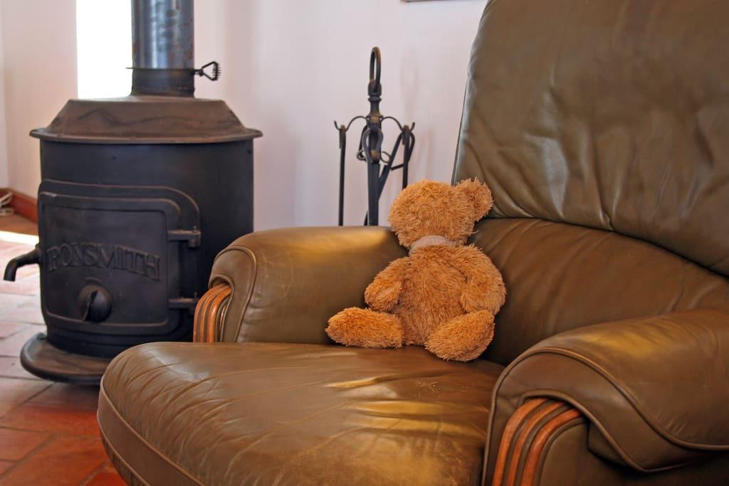 Living room with fine woodburner