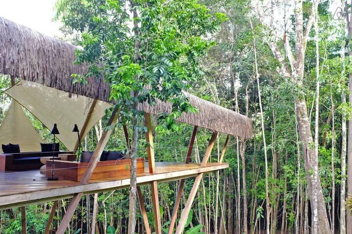 Modern Treehouse - Luxurious Design - Itacaré - Villa