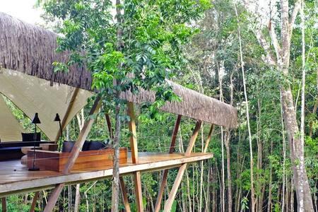 Modern Treehouse - Luxurious Design - イタカレ