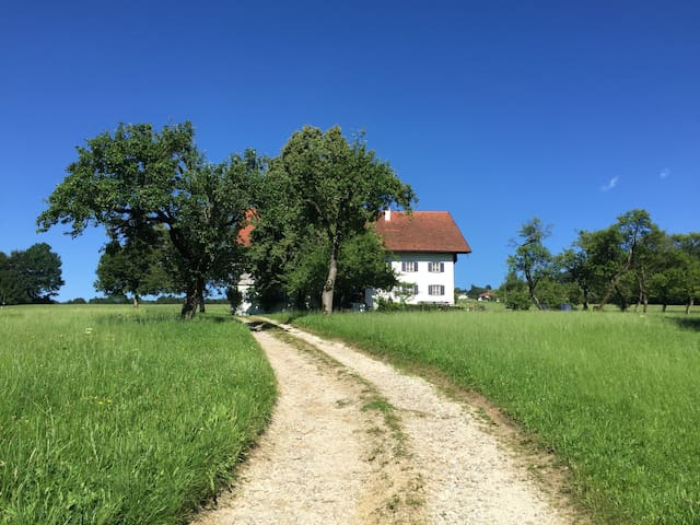 The house - a peaceful oasis yet close to entertainment - hiking, swimming, sailing and lovely area restaurants and high culture in nearby Salzburg