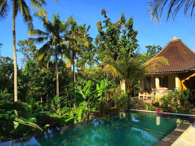 New Villa with pool/Jungle view - Ubud