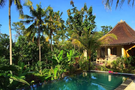 New Villa with pool/Jungle view - 乌布德 - 别墅