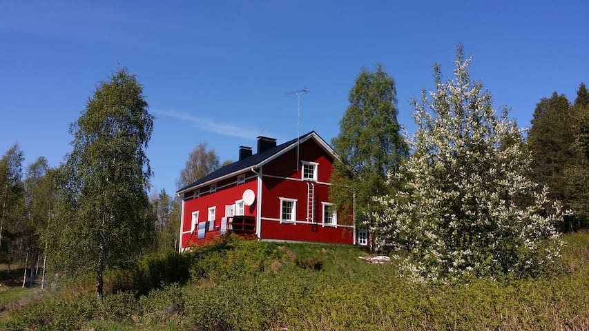 House by the river - Rovaniemi