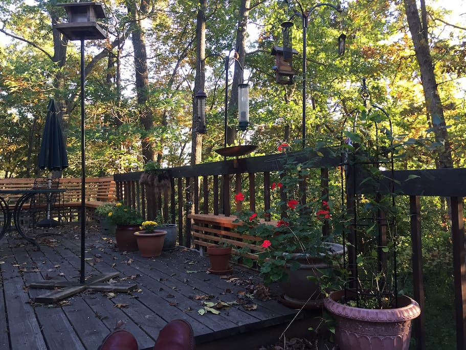 Back deck in Fall