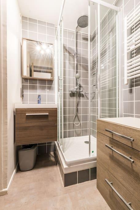 Salle d'eau refaite entièrement avec toilette.
