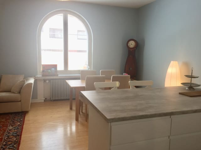 Charming apartment in the very center (78m2)