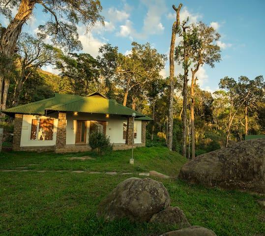 Neelakurunji 2 luxury rooms - Munnar - Bed & Breakfast