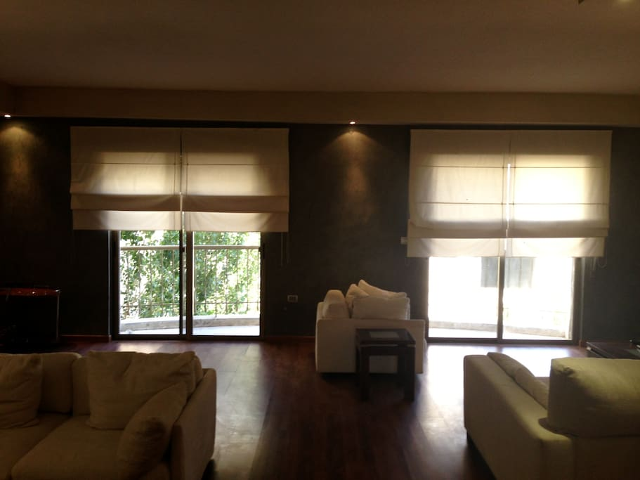 Living Room/Guest