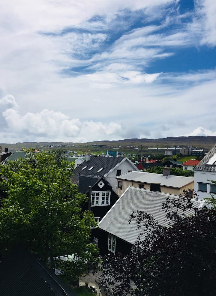 Eclectic NEST in downtown Tórshavn