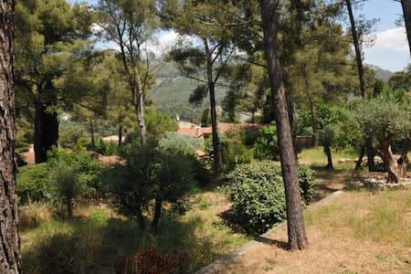 Charmant T1 de 30 m² en rez de villa - Toulon - Villa