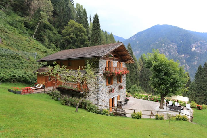 Chalet in the Dolomites 2 - Canal San Bovo - Zomerhuis/Cottage