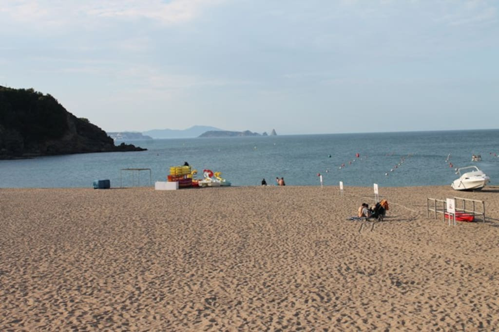The beach of Sa Riera, 100m from the apartment