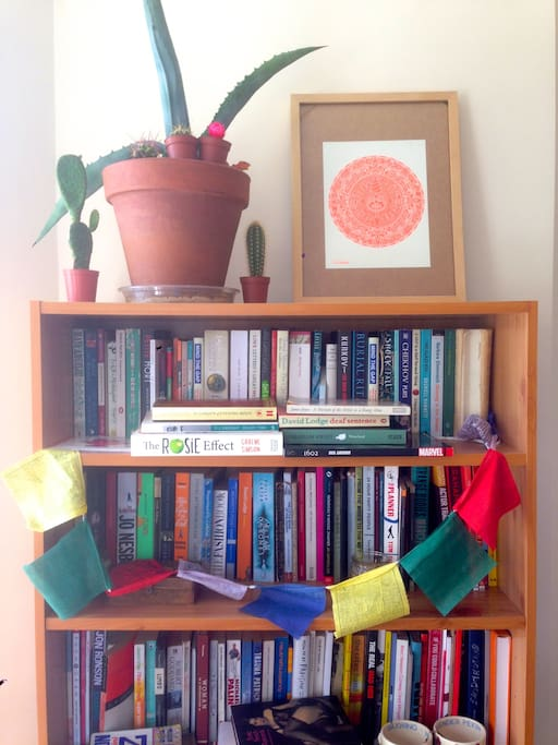 Top half of one of our bookshelves. See if you can spot the dinosaurs.