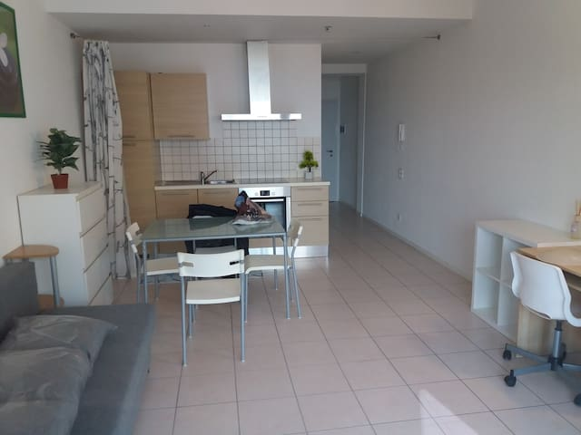 BEAUTIFUL STUDIOWITH LAKE VIEW IN A QUITE AREA - Lugano - อพาร์ทเมนท์