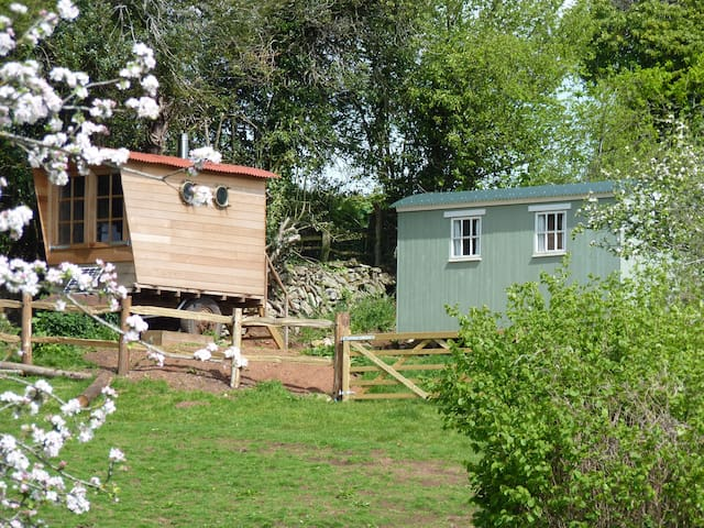 Shepherds Hut & Wagon in an Orchard - Exeter - Autre