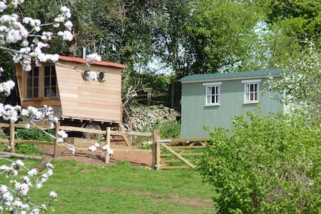 Shepherds Hut & Wagon in an Orchard - Exeter - Andere