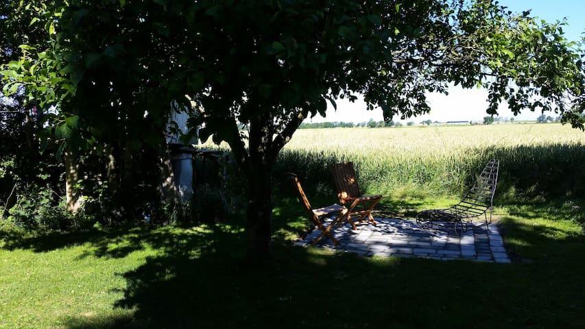 Charmig Skånelänga på Österlen - Borrby - House