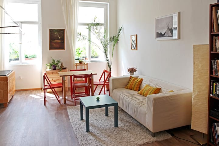 Sunny apartment in central Prague. - Praha - Apartemen