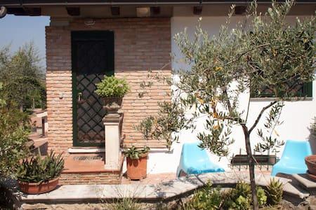 A casa di Elvira - Aprilia - House
