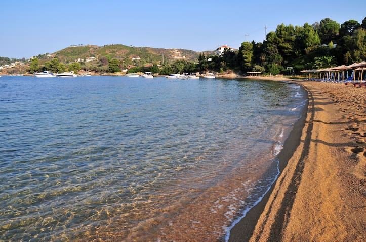 Kolios seaside studio - Sporades - Apartament