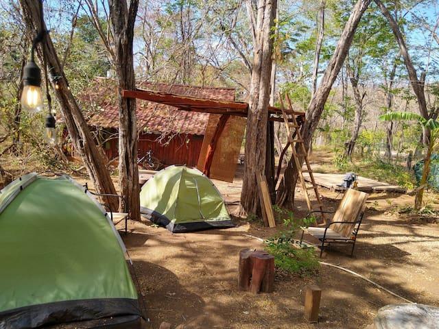 Pachamama bio camp