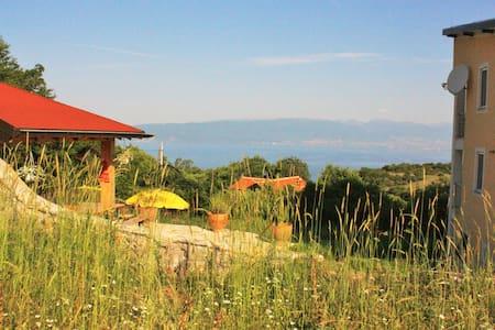 Villa Velestovo 2 - Ohrid - Villa