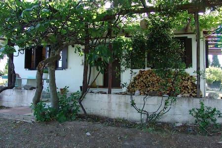 Delightful  house  in fenced land - Argalasti - Bungalow