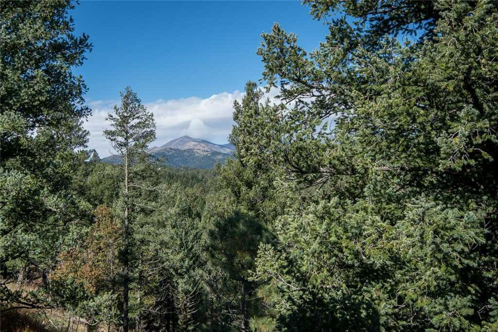 Mountain Charm - This upscale cabin has fantastic views and plenty of amenities.