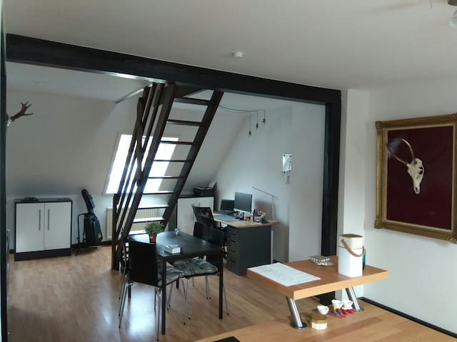 Rooftop Loft in Hannover City