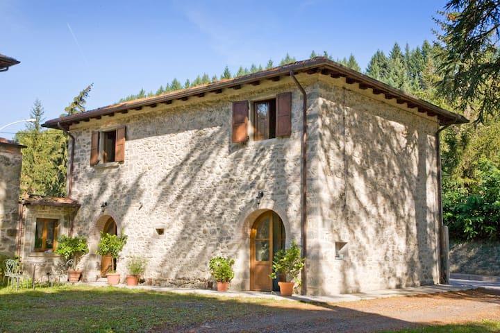 La CASETTA di GIOVANNI - Pratovecchio - House