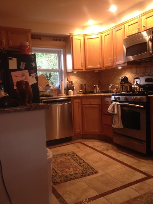 Spacious kitchen with stainless steel cookware