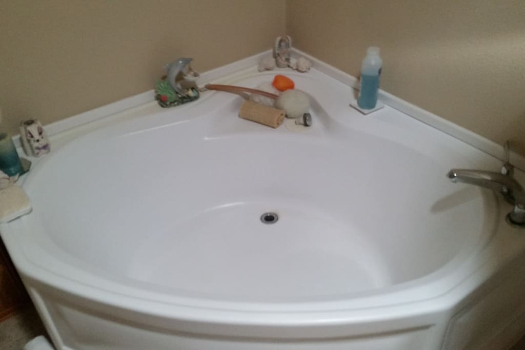 Master bathroom tub, there is also a shower