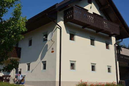 Old house Zatrnik - Zgornje Gorje