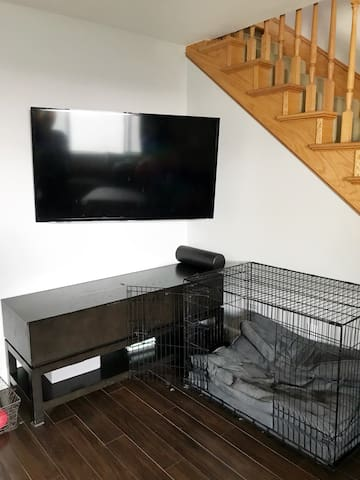 55 inch TV with DirecTV