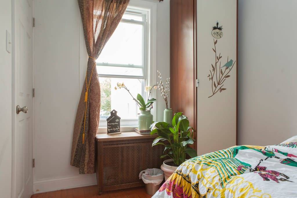 sunlight streaming into your front facing guest room.