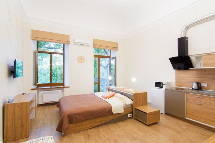 Красивая квартира возле Дерибасовской