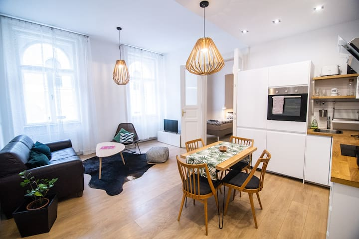 Stylish downtown apartment with A/C