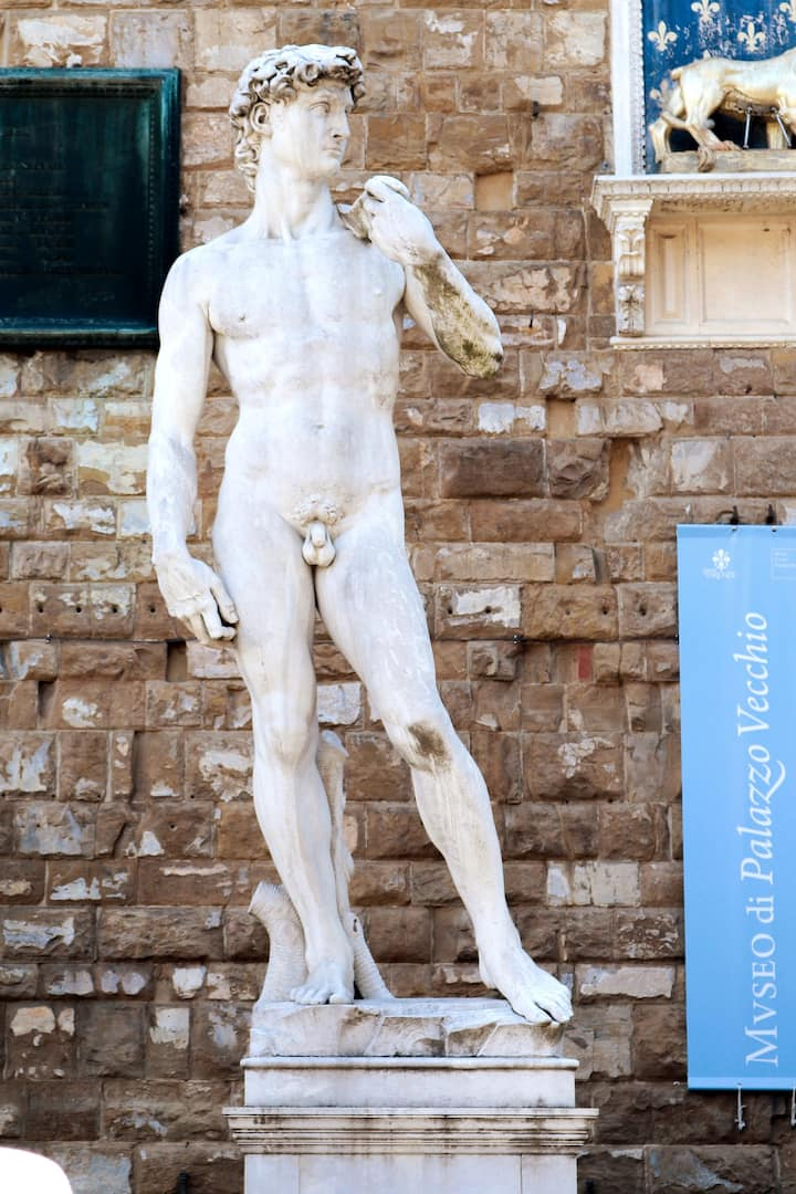 Michelangelo's David (copy)